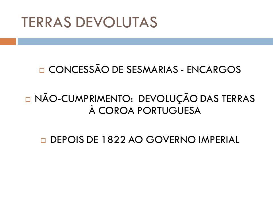 TERRAS DEVOLUTAS CONCESSÃO DE SESMARIAS - ENCARGOS NÃO-CUMPRIMENTO: DEVOLUÇÃO DAS TERRAS À COROA PORTUGUESA DEPOIS DE 1822 AO GOVERNO IMPERIAL