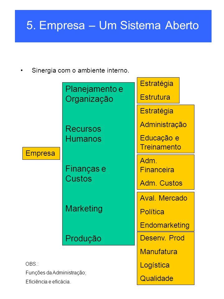 5.Empresa – Um Sistema Aberto Sinergia com o ambiente interno.