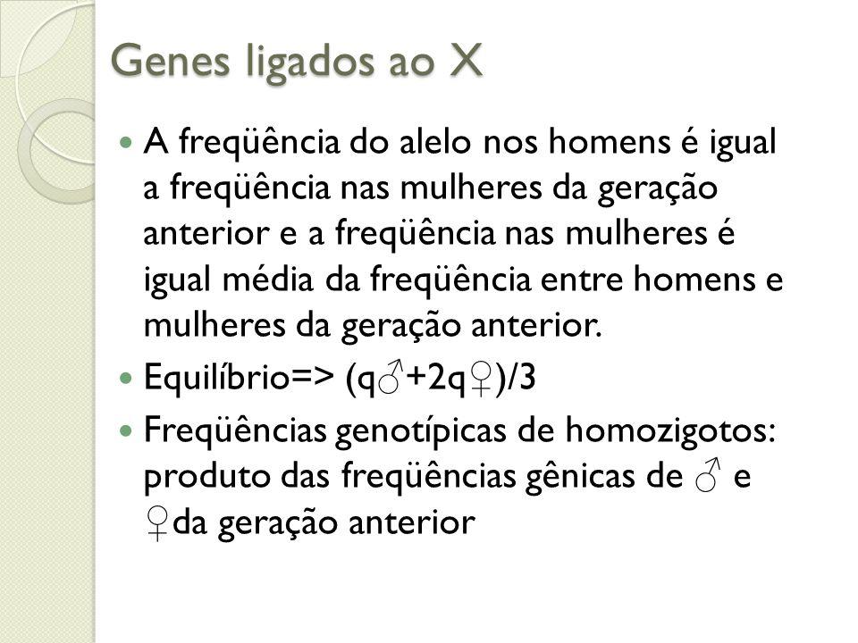 Genes ligados ao X A freqüência do alelo nos homens é igual a freqüência nas mulheres da geração anterior e a freqüência nas mulheres é igual média da