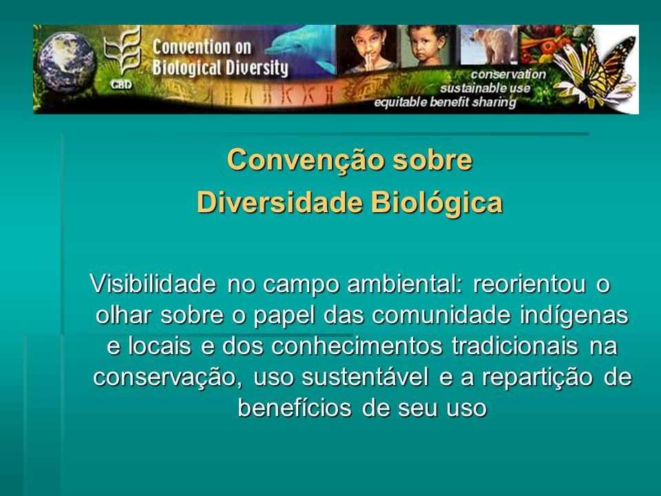 Convenção sobre Diversidade Biológica Visibilidade no campo ambiental: reorientou o olhar sobre o papel das comunidade indígenas e locais e dos conhecimentos tradicionais na conservação, uso sustentável e a repartição de benefícios de seu uso
