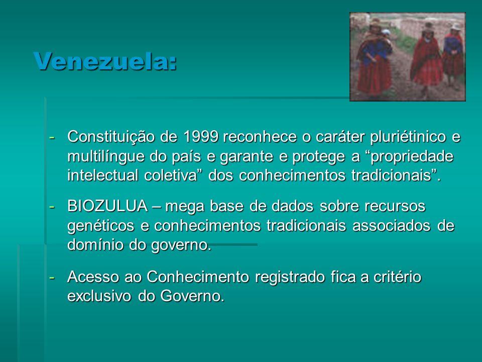 -Constituição de 1999 reconhece o caráter pluriétinico e multilíngue do país e garante e protege a propriedade intelectual coletiva dos conhecimentos tradicionais.