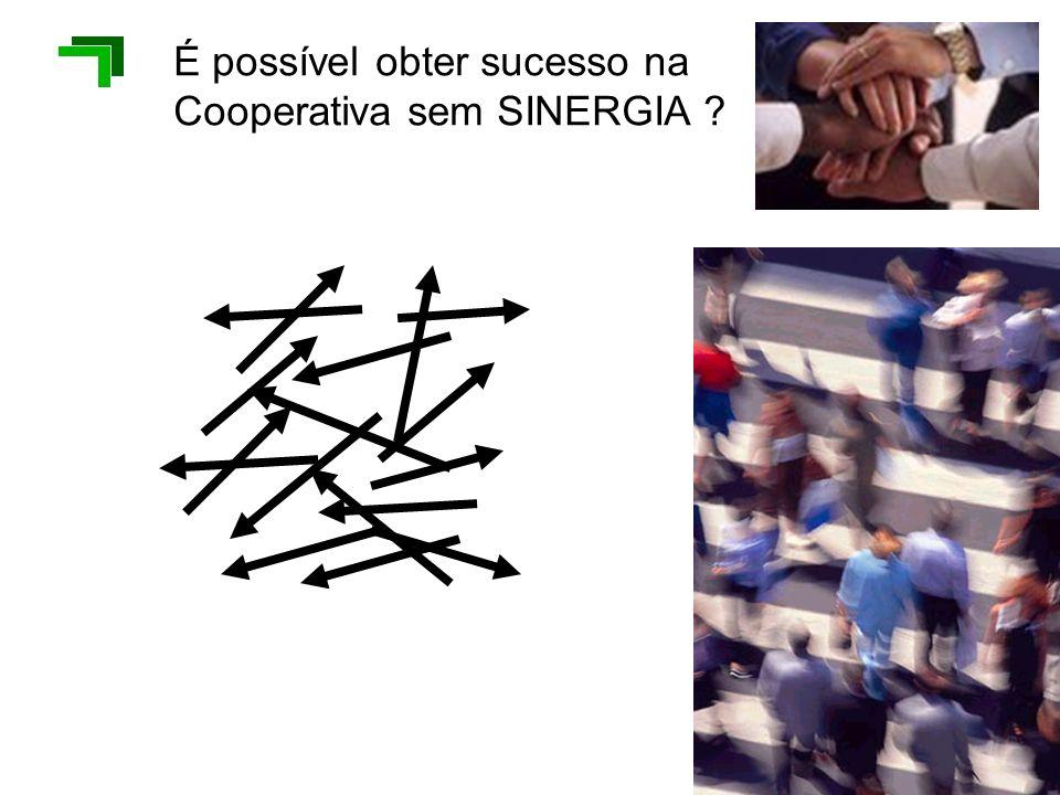 É possível obter sucesso na Cooperativa sem SINERGIA ?