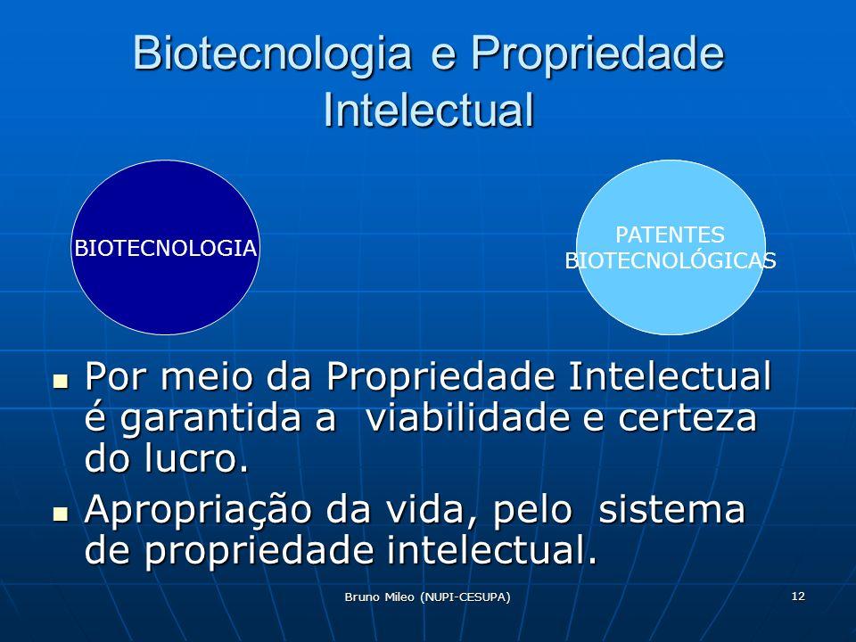 Bruno Mileo (NUPI-CESUPA) 12 Biotecnologia e Propriedade Intelectual Por meio da Propriedade Intelectual é garantida a viabilidade e certeza do lucro.