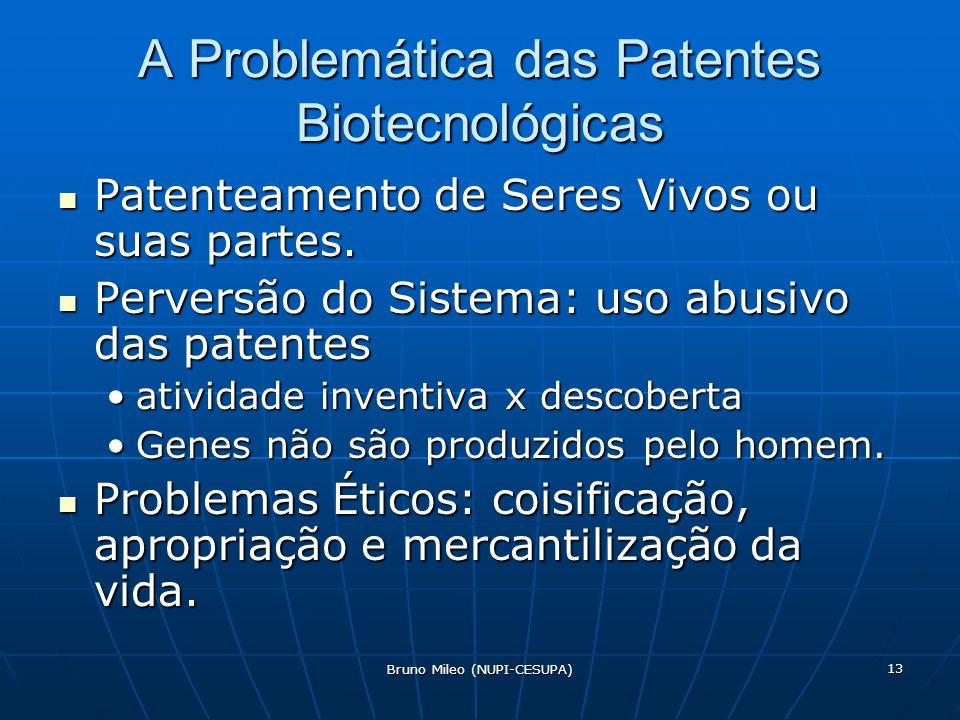 Bruno Mileo (NUPI-CESUPA) 13 A Problemática das Patentes Biotecnológicas Patenteamento de Seres Vivos ou suas partes.