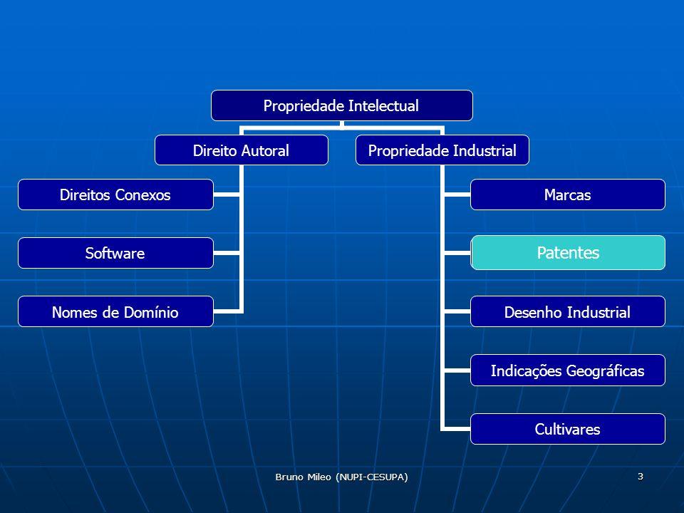 Bruno Mileo (NUPI-CESUPA) 3 Propriedade Intelectual Direito Autoral Direitos Conexos Software Nomes de Domínio Propriedade Industrial Marcas Patentes Desenho Industrial Indicações Geográficas Cultivares Patentes