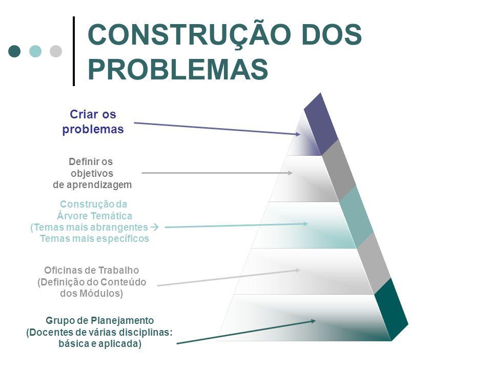 CONSTRUÇÃO DOS PROBLEMAS Grupo de Planejamento (Docentes de várias disciplinas: básica e aplicada) Oficinas de Trabalho (Definição do Conteúdo dos Mód