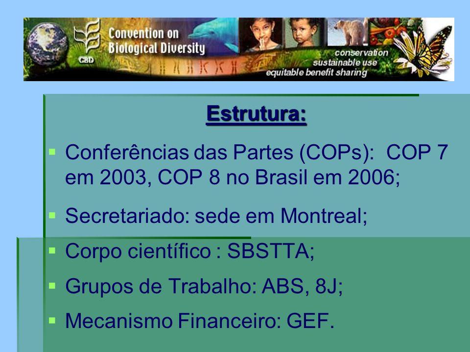 Estrutura: Conferências das Partes (COPs): COP 7 em 2003, COP 8 no Brasil em 2006; Secretariado: sede em Montreal; Corpo científico : SBSTTA; Grupos d