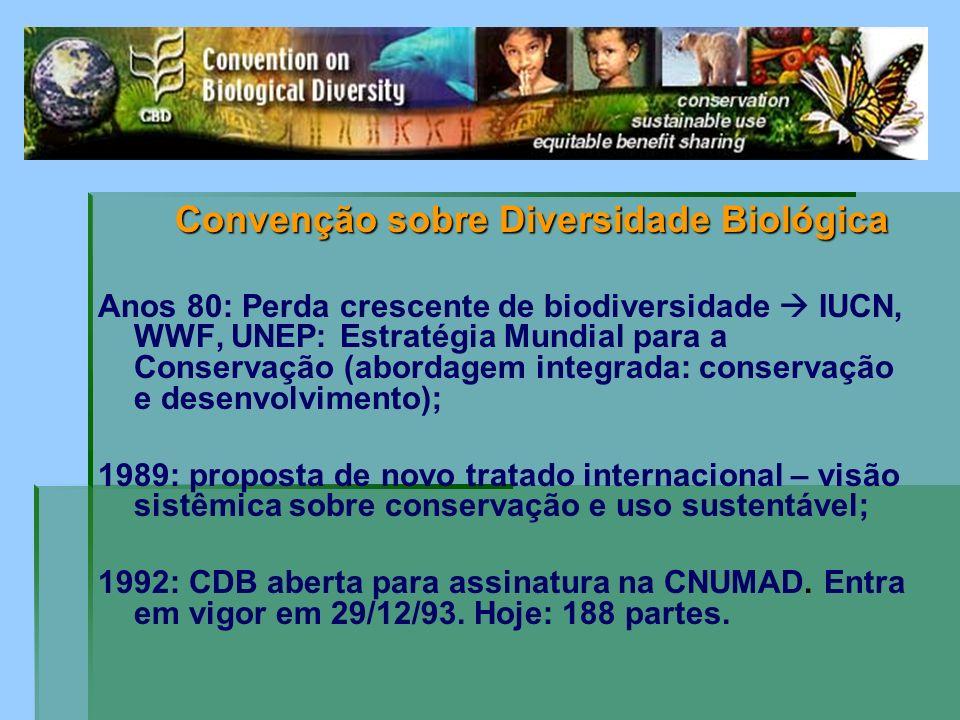 Convenção sobre Diversidade Biológica Convenção sobre Diversidade Biológica Anos 80: Perda crescente de biodiversidade IUCN, WWF, UNEP: Estratégia Mun
