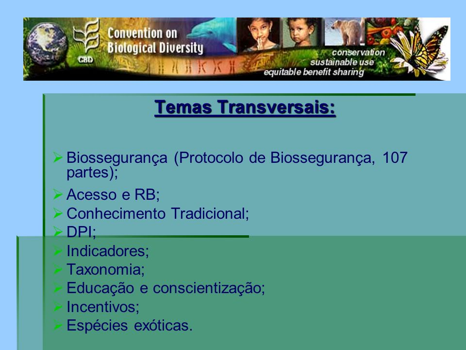 Temas Transversais: Biossegurança (Protocolo de Biossegurança, 107 partes); Acesso e RB; Conhecimento Tradicional; DPI; Indicadores; Taxonomia; Educaç