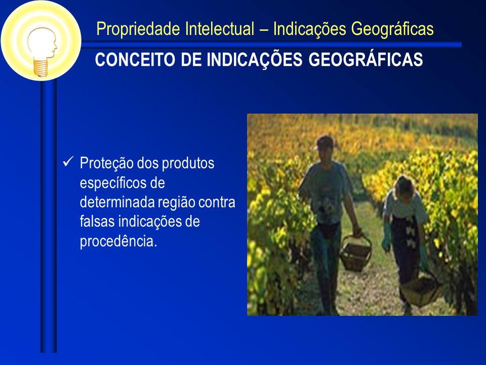 CONCEITO DE INDICAÇÕES GEOGRÁFICAS Proteção dos produtos específicos de determinada região contra falsas indicações de procedência. Propriedade Intele
