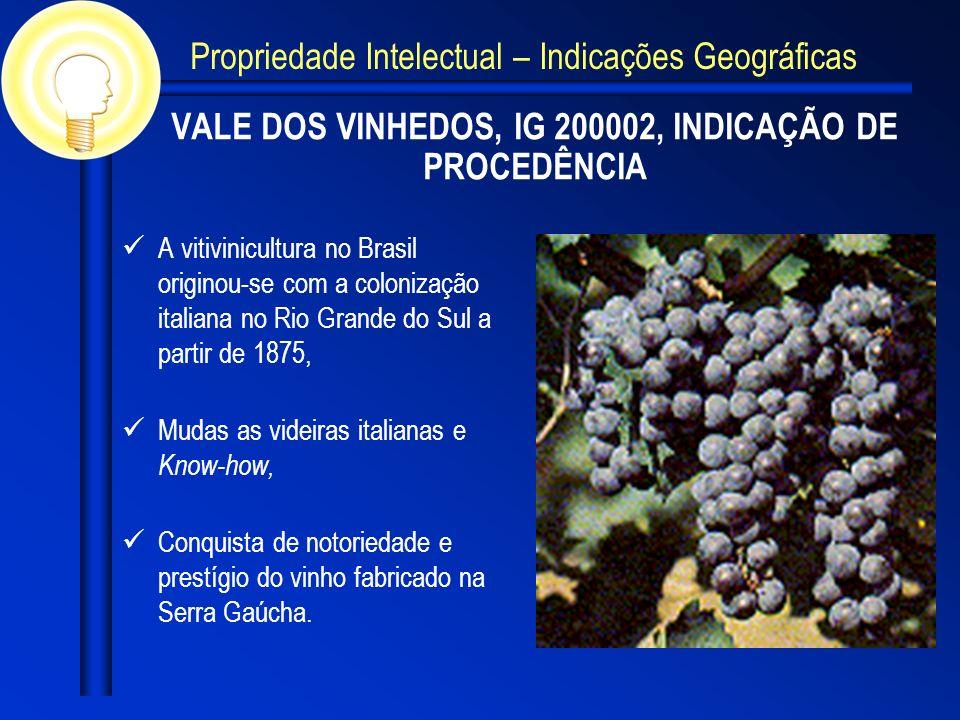 VALE DOS VINHEDOS, IG 200002, INDICAÇÃO DE PROCEDÊNCIA A vitivinicultura no Brasil originou-se com a colonização italiana no Rio Grande do Sul a partir de 1875, Mudas as videiras italianas e Know-how, Conquista de notoriedade e prestígio do vinho fabricado na Serra Gaúcha.