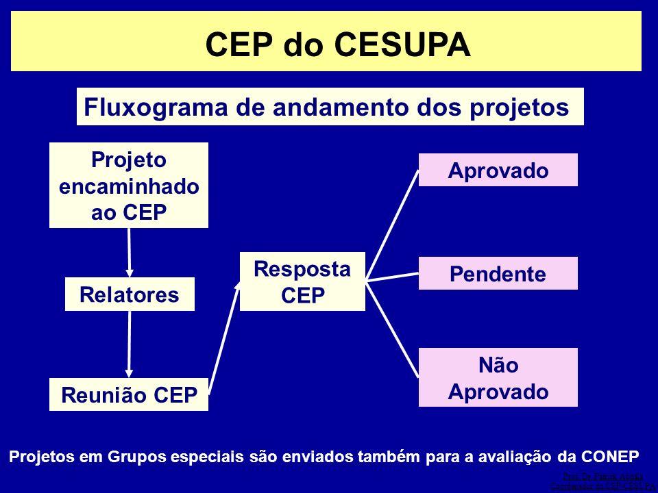 Prof. Dr. Patrick Abdala Coordenador do CEP-CESUPA CEP do CESUPA Fluxograma de andamento dos projetos Projeto encaminhado ao CEP Relatores Reunião CEP