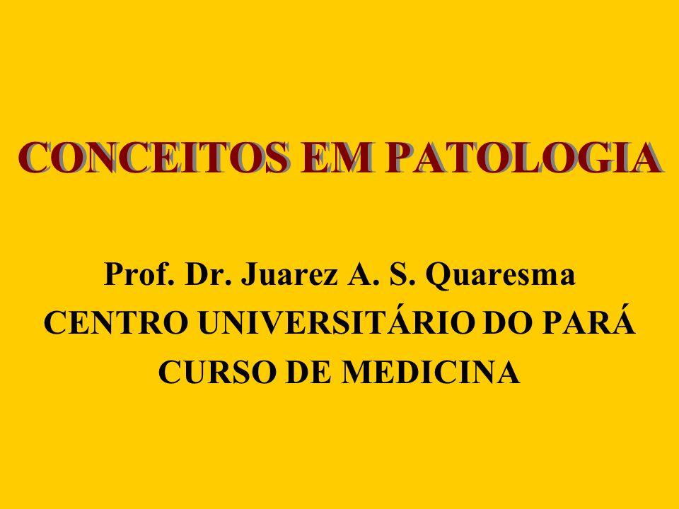 INTRODUÇÃO À PATOLOGIA Conceito de patologia –Pathos – sofrimento –Logos – estudo Divisão da patologia –Patologia geral –Patologia sistêmica ou especial
