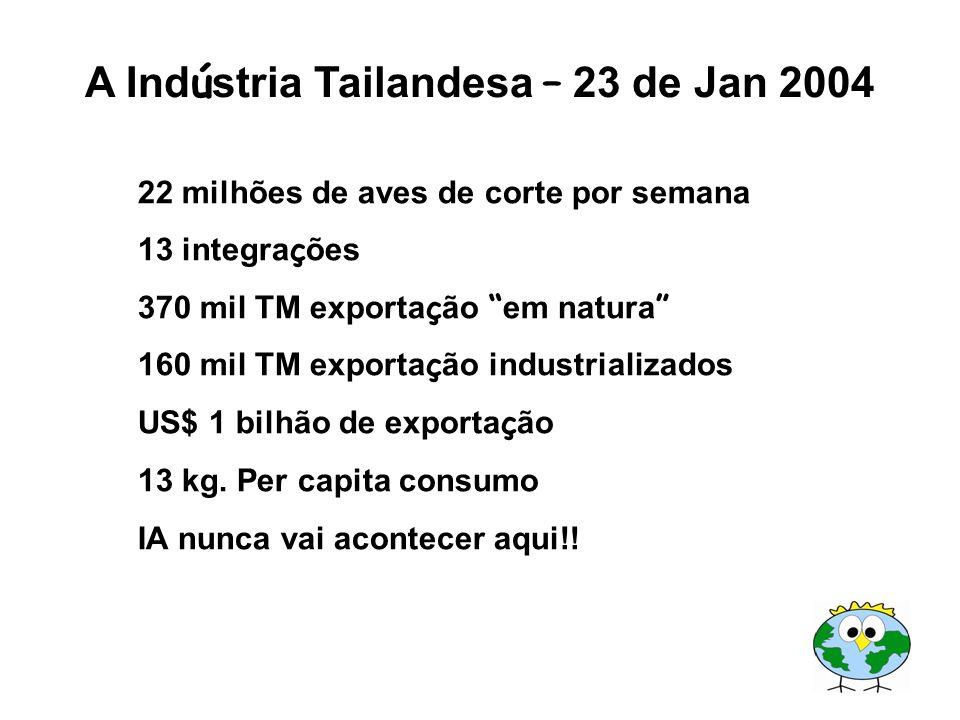 A Ind ú stria Tailandesa – 23 de Jan 2004 22 milhões de aves de corte por semana 13 integra ç ões 370 mil TM exporta ç ão em natura 160 mil TM exporta