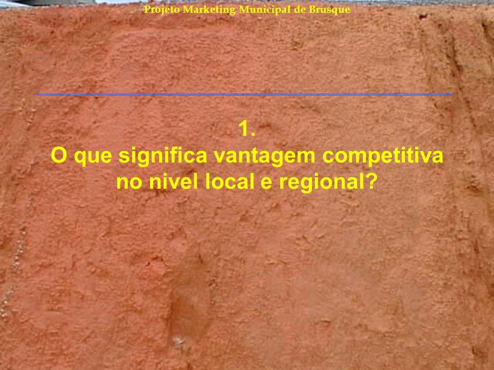 Projeto Marketing Municipal de Brusque Por que criar uma vantagem competitiva.