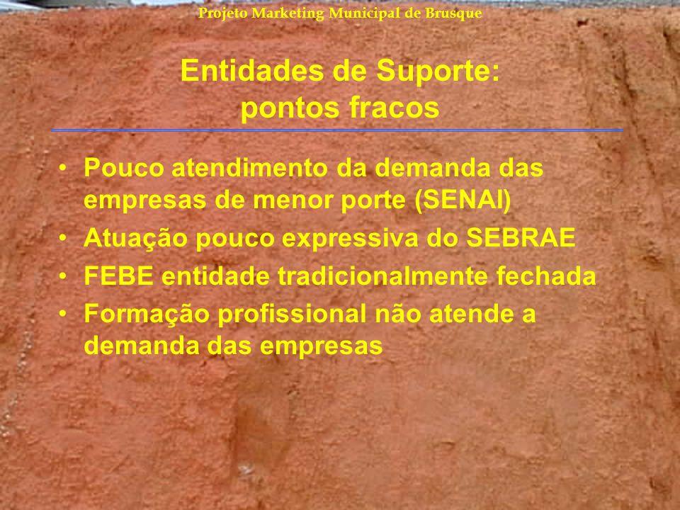 Projeto Marketing Municipal de Brusque Entidades de Suporte: pontos fracos Pouco atendimento da demanda das empresas de menor porte (SENAI) Atuação po