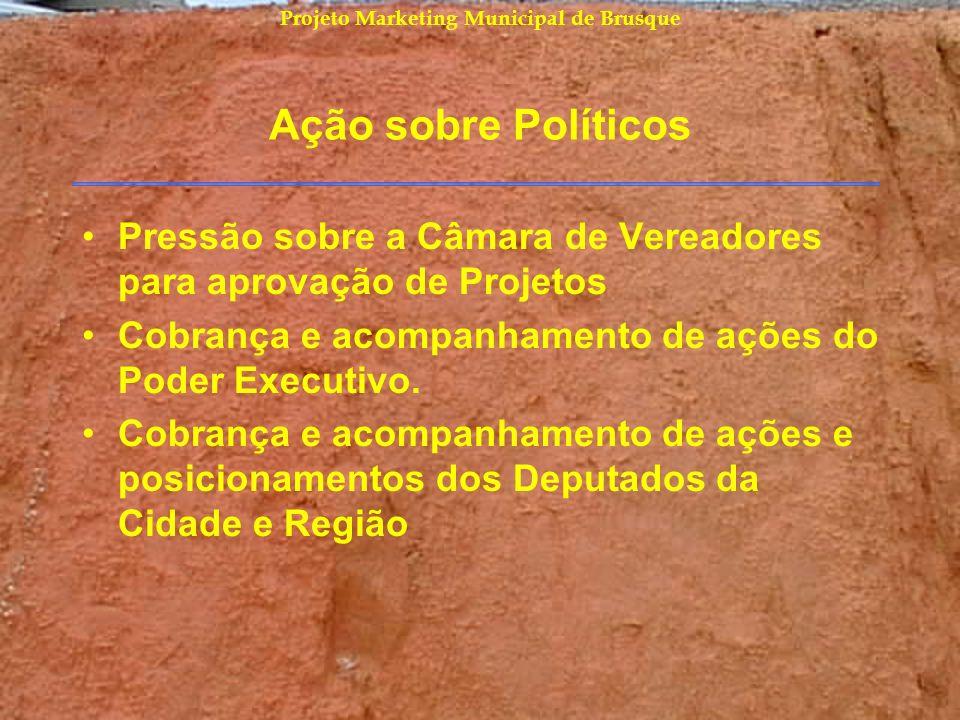 Projeto Marketing Municipal de Brusque Ação sobre Políticos Pressão sobre a Câmara de Vereadores para aprovação de Projetos Cobrança e acompanhamento