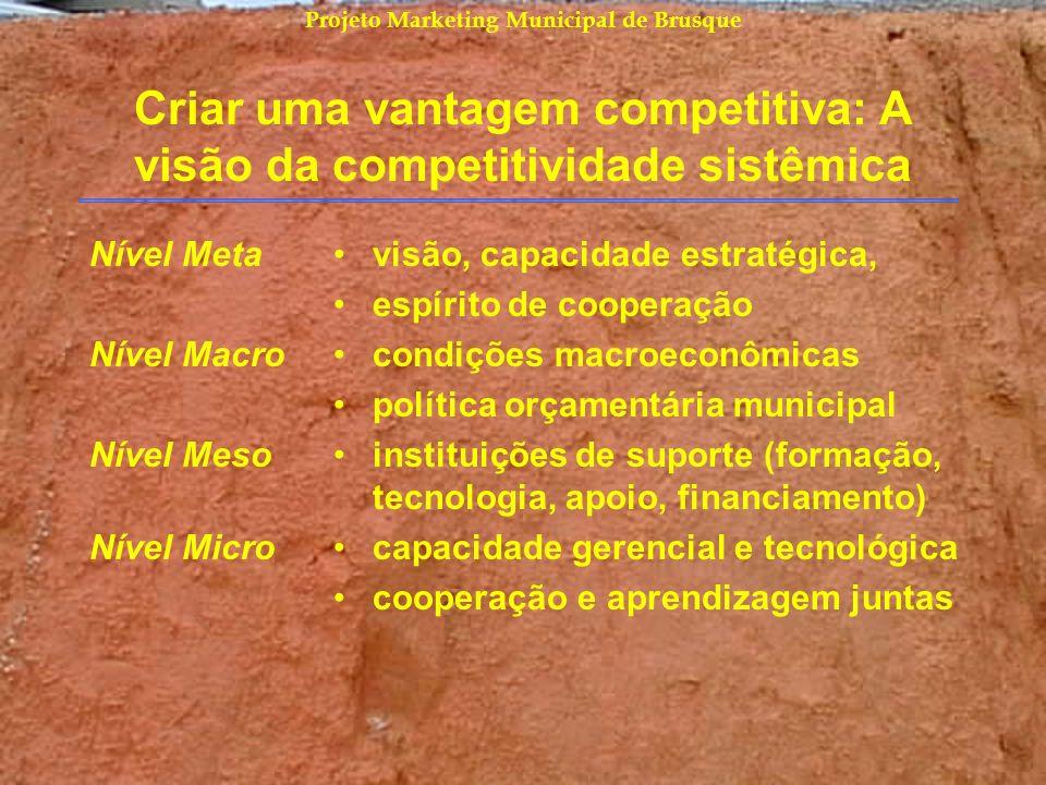 Projeto Marketing Municipal de Brusque Criar uma vantagem competitiva: A visão da competitividade sistêmica Nível Meta Nível Macro Nível Meso Nível Mi