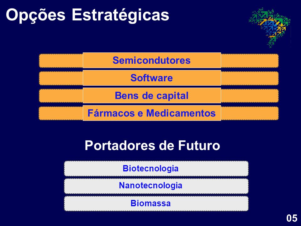 Semicondutores Software Fármacos e Medicamentos Bens de capital Nanotecnologia Biotecnologia Biomassa Opções Estratégicas Portadores de Futuro 05