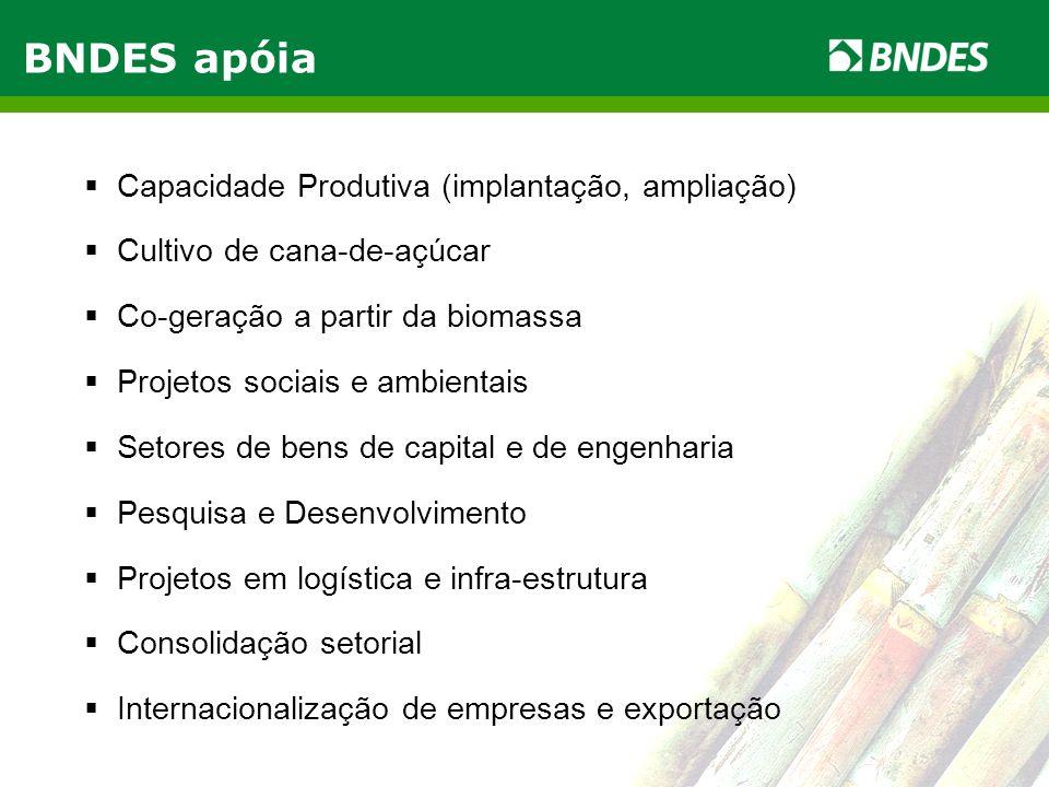 LIVRO VERDE DO ETANOL 4 Capacidade Produtiva (implantação, ampliação) Cultivo de cana-de-açúcar Co-geração a partir da biomassa Projetos sociais e amb