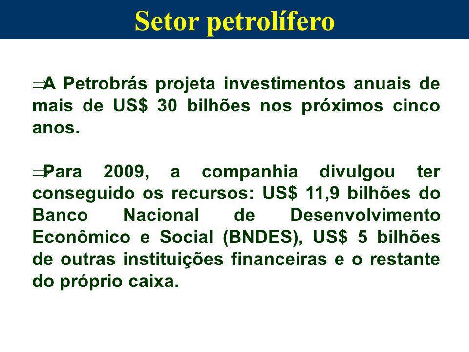 A Petrobrás projeta investimentos anuais de mais de US$ 30 bilhões nos próximos cinco anos. Para 2009, a companhia divulgou ter conseguido os recursos