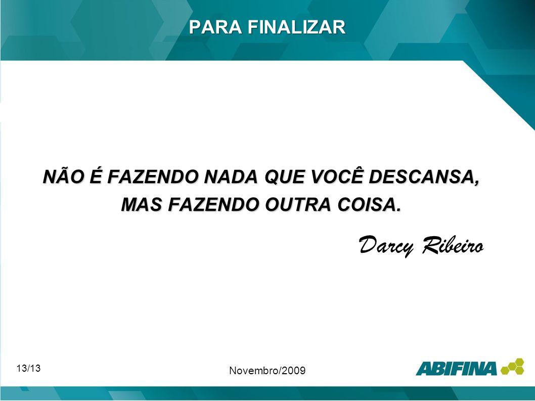 PARA FINALIZAR NÃO É FAZENDO NADA QUE VOCÊ DESCANSA, MAS FAZENDO OUTRA COISA. Darcy Ribeiro 13/13 Novembro/2009