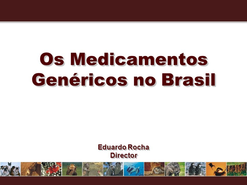 Os Medicamentos Genéricos no Brasil Eduardo Rocha Director Director