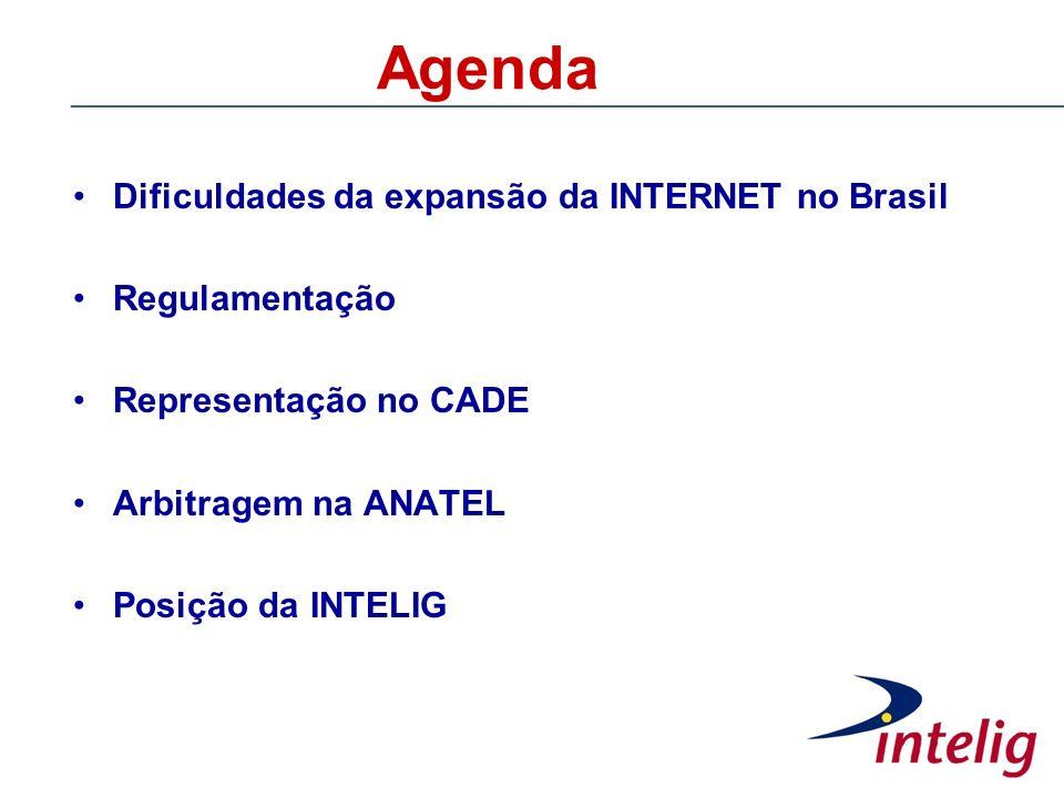 Agenda Dificuldades da expansão da INTERNET no Brasil Regulamentação Representação no CADE Arbitragem na ANATEL Posição da INTELIG