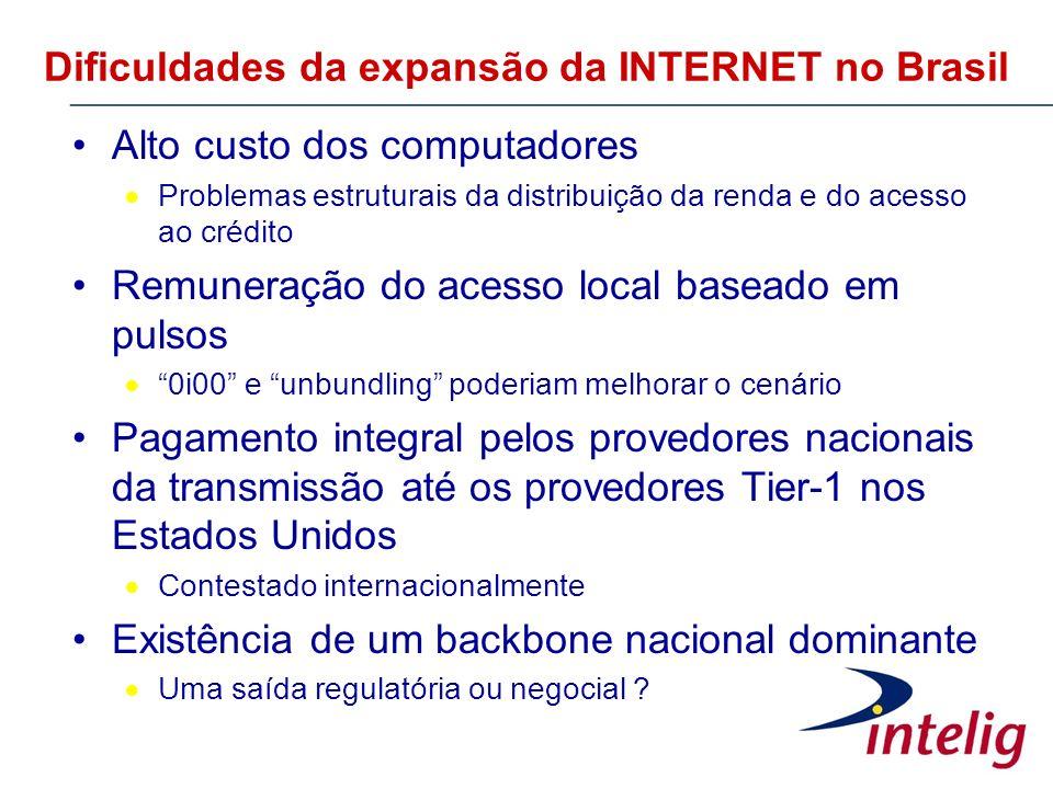 Dificuldades da expansão da INTERNET no Brasil Alto custo dos computadores Problemas estruturais da distribuição da renda e do acesso ao crédito Remun