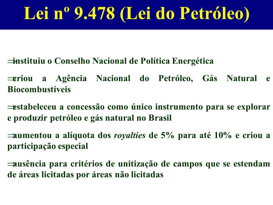 instituiu o Conselho Nacional de Política Energética criou a Agência Nacional do Petróleo, Gás Natural e Biocombustíveis estabeleceu a concessão como
