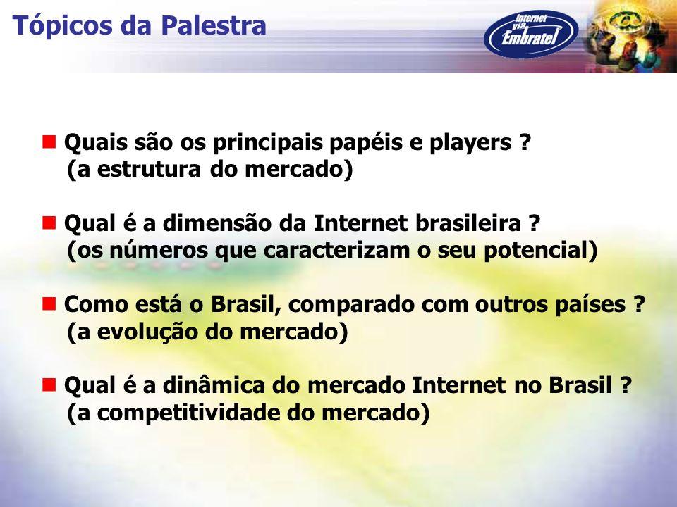 Tópicos da Palestra Quais são os principais papéis e players ? (a estrutura do mercado) Qual é a dimensão da Internet brasileira ? (os números que car