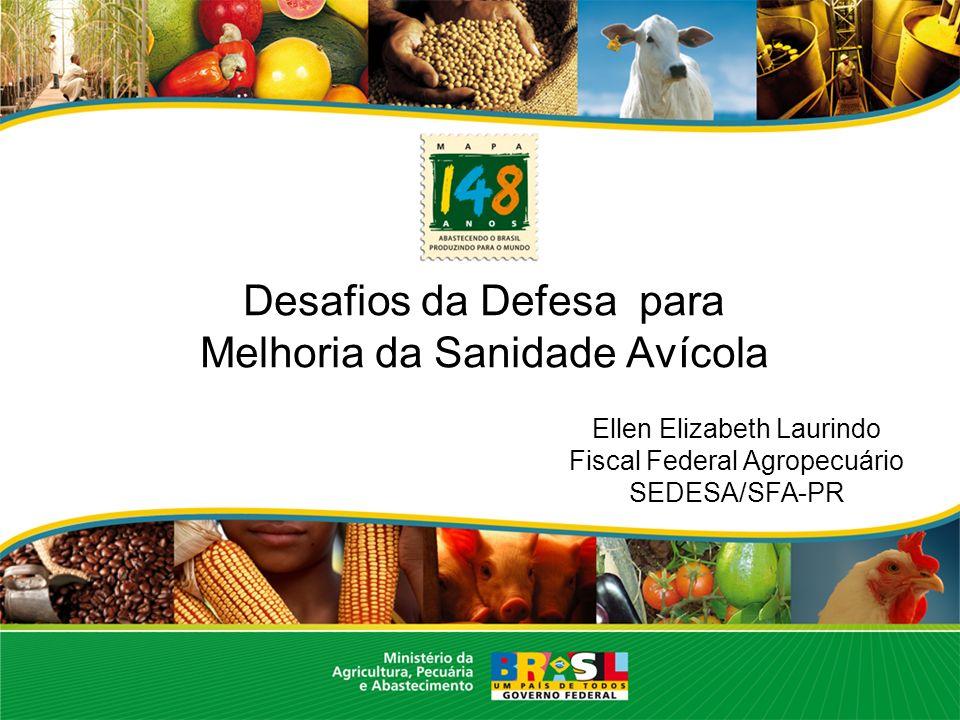 Desafios da Defesa para Melhoria da Sanidade Avícola Ellen Elizabeth Laurindo Fiscal Federal Agropecuário SEDESA/SFA-PR