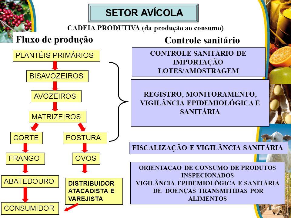 SETOR AVÍCOLA CADEIA PRODUTIVA (da produção ao consumo) Fluxo de produção Controle sanitário CONTROLE SANITÁRIO DE IMPORTAÇÃO LOTES/AMOSTRAGEM REGISTR