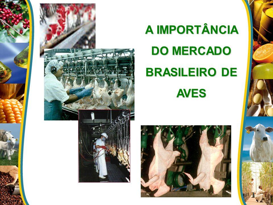 A IMPORTÂNCIA DO MERCADO BRASILEIRO DE AVES