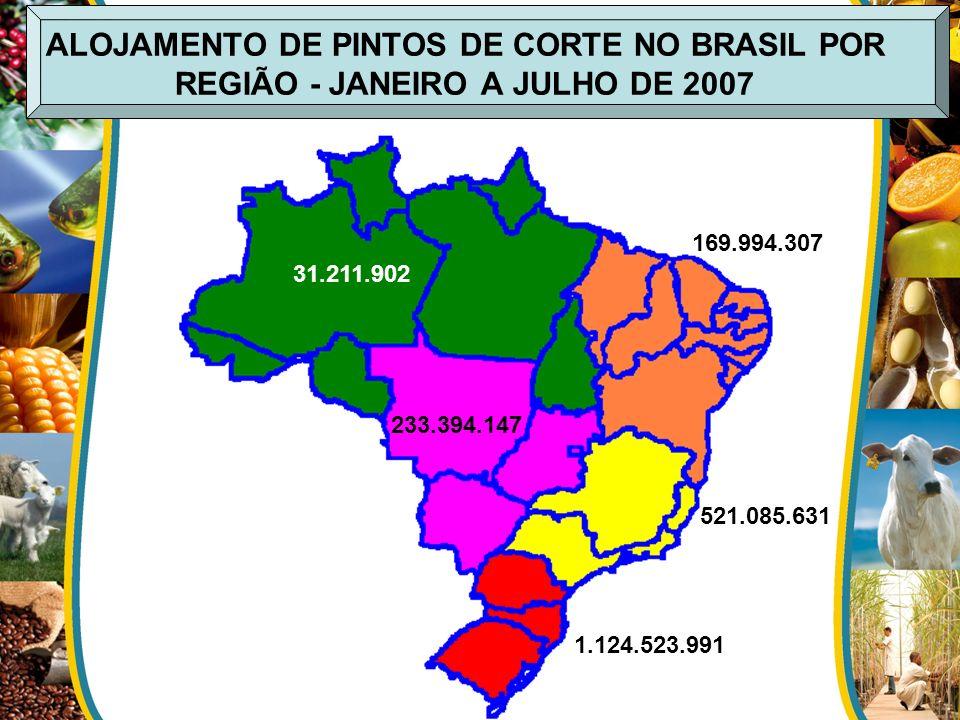 ALOJAMENTO DE PINTOS DE CORTE NO BRASIL POR REGIÃO - JANEIRO A JULHO DE 2007 521.085.631 1.124.523.991 233.394.147 169.994.307 31.211.902
