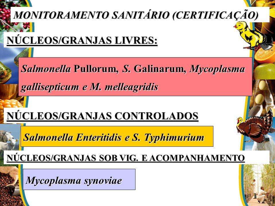 MONITORAMENTO SANITÁRIO (CERTIFICAÇÃO) NÚCLEOS/GRANJAS LIVRES: Salmonella Pullorum, S. Galinarum, Mycoplasma gallisepticum e M. melleagridis NÚCLEOS/G