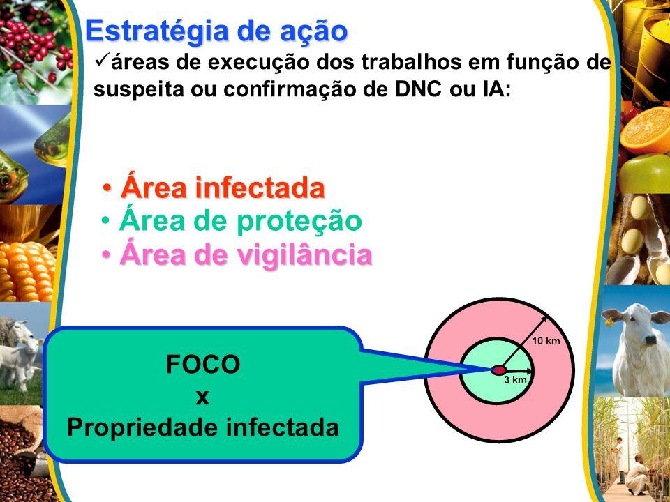 Área infectada Área infectada Área de vigilância Área de vigilância Estratégia de ação Estratégia de ação áreas de execução dos trabalhos em função de