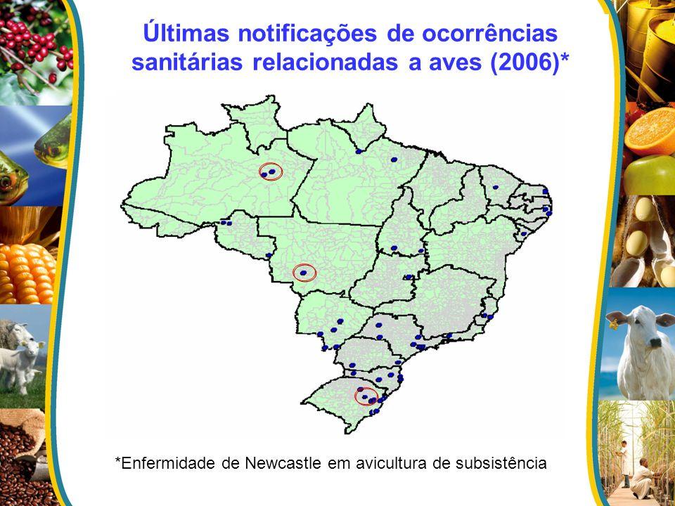 Últimas notificações de ocorrências sanitárias relacionadas a aves (2006)* *Enfermidade de Newcastle em avicultura de subsistência