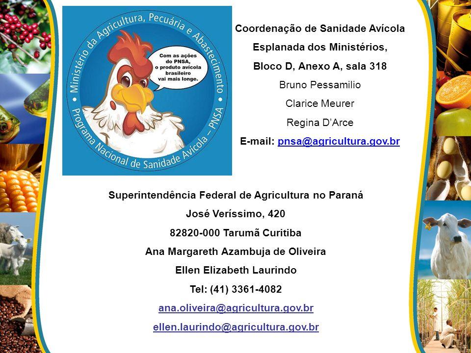 Coordenação de Sanidade Avícola Esplanada dos Ministérios, Bloco D, Anexo A, sala 318 Bruno Pessamilio Clarice Meurer Regina DArce E-mail: pnsa@agricu