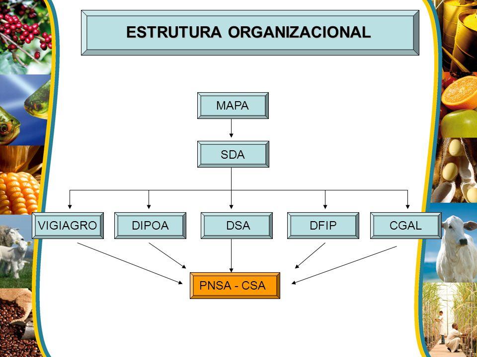 ESTRUTURA ORGANIZACIONAL MAPA SDA DSADFIPCGALDIPOAVIGIAGRO PNSA - CSA