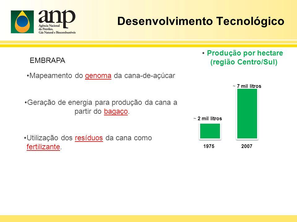 Desenvolvimento Tecnológico Mapeamento do genoma da cana-de-açúcar Geração de energia para produção da cana a partir do bagaço. Utilização dos resíduo