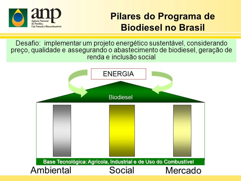Desafio: implementar um projeto energético sustentável, considerando preço, qualidade e assegurando o abastecimento de biodiesel, geração de renda e i