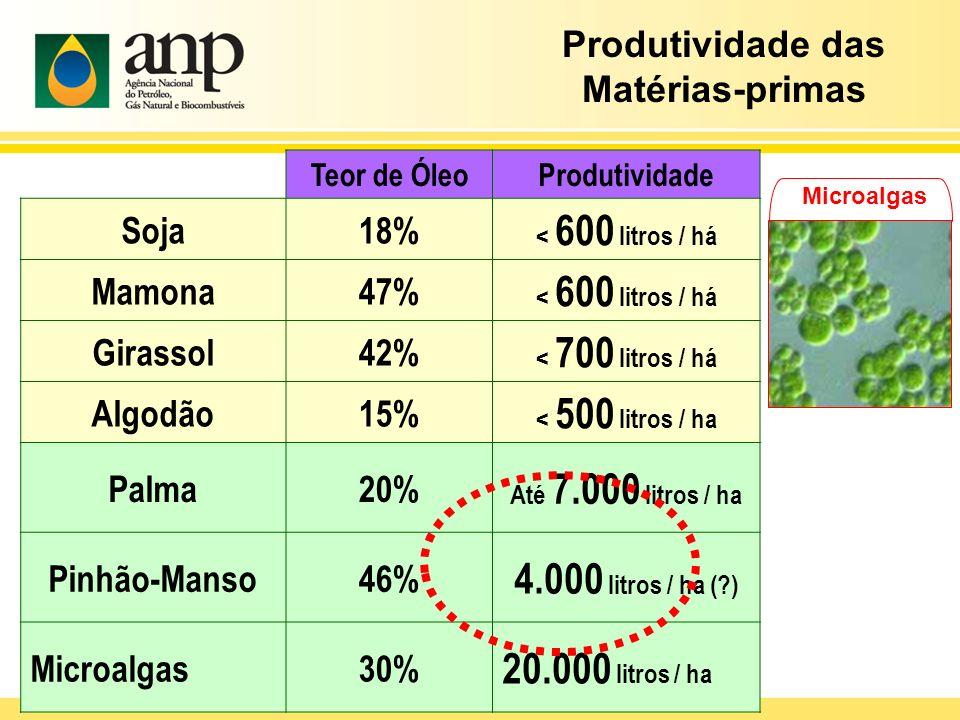 Produtividade das Matérias-primas Teor de ÓleoProdutividade Soja18% < 600 litros / há Mamona47% < 600 litros / há Girassol42% < 700 litros / há Algodã