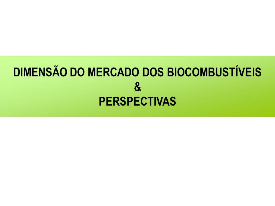 DIMENSÃO DO MERCADO DOS BIOCOMBUSTÍVEIS & PERSPECTIVAS