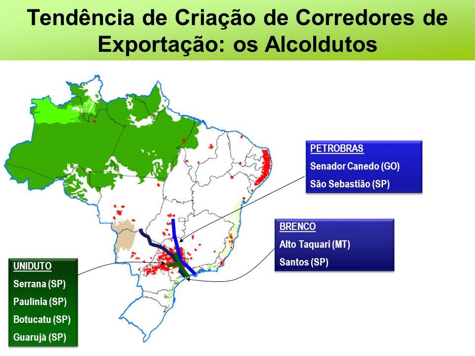 Tendência de Criação de Corredores de Exportação: os Alcoldutos PETROBRAS Senador Canedo (GO) São Sebastião (SP) PETROBRAS Senador Canedo (GO) São Seb