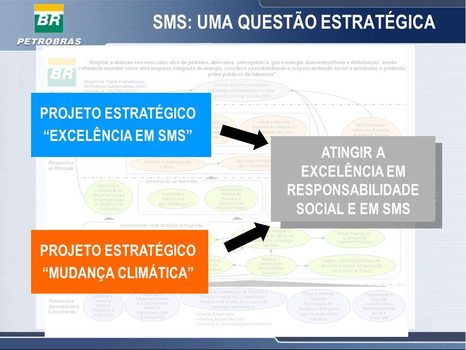 13 SMS: UMA QUESTÃO ESTRATÉGICA PROJETO ESTRATÉGICO EXCELÊNCIA EM SMS PROJETO ESTRATÉGICO MUDANÇA CLIMÁTICA ATINGIR A EXCELÊNCIA EM RESPONSABILIDADE S