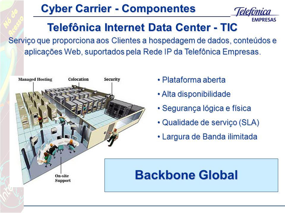 Telefônica Internet Data Center - TIC Serviço que proporciona aos Clientes a hospedagem de dados, conteúdos e aplicações Web, suportados pela Rede IP