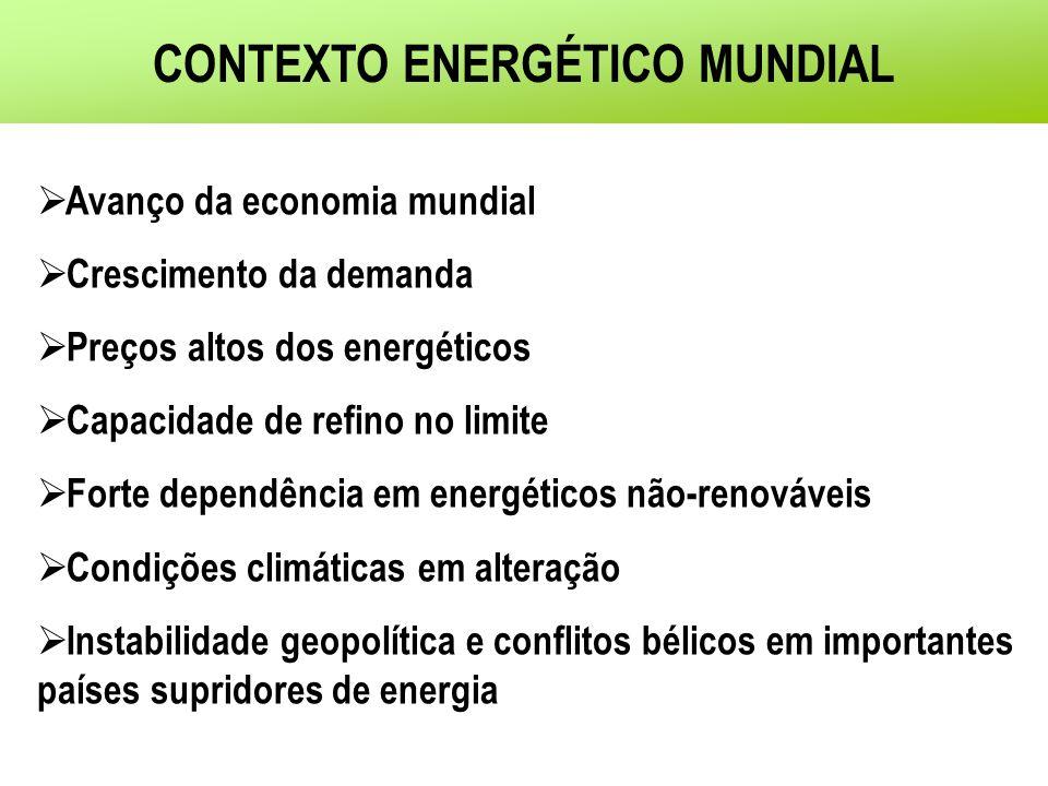 DESAFIOS PARA A POLÍTICA PÚBLICA EM ENERGIA Segurança no suprimento energético de longo prazo Modicidade dos preços dos energéticos Manutenção da competitividade da indústria local Mudanças climáticas e meio ambienteBIOCOMBUSTÍVEIS