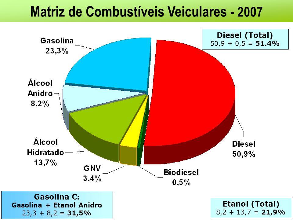 BIOCOMBUSTÍVEIS: PERSPECTIVAS NO FUTURO PRÓXIMO Demanda crescente no mundo Preocupações ambientais mais rigorosas Aumento do comércio internacional Avanço na produtividade e no balanço energético dos biocombustíveis: Biodiesel : novas oleaginosas (6.000 L/ha) versus culturas tradicionais (600 L/ha) Etanol : novos métodos produtivos (hidrólise do bagaço/celulose) O desenvolvimento desta tecnologia trará: Segurança Energética + Segurança Alimentar