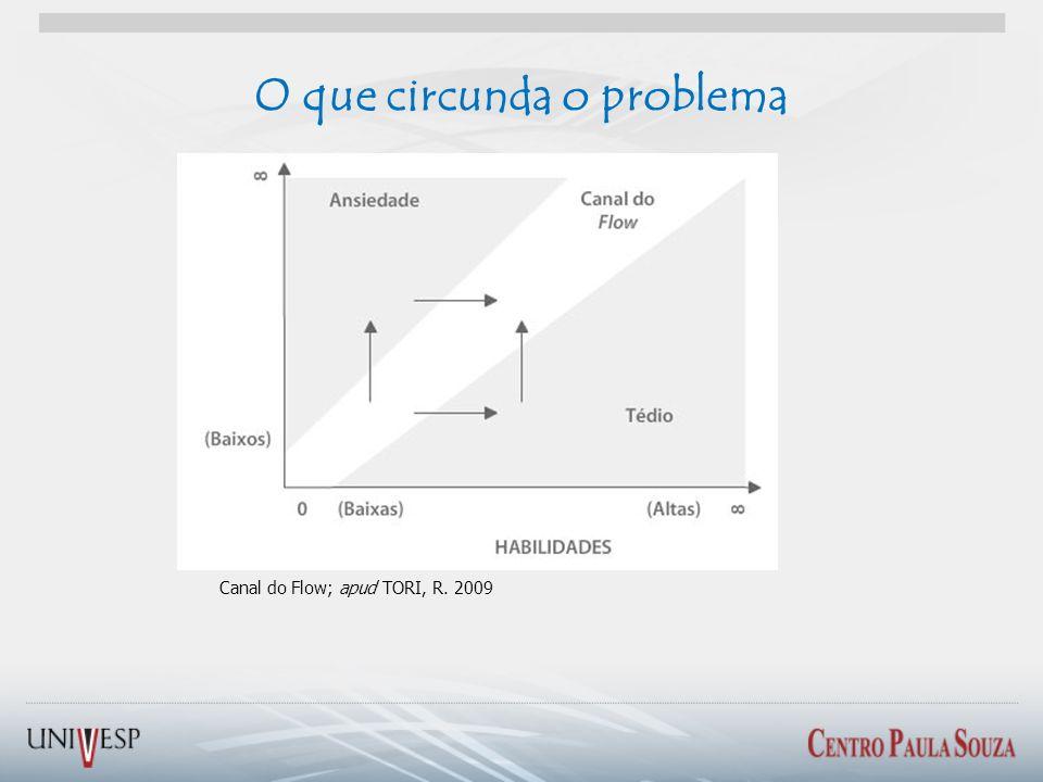 Canal do Flow; apud TORI, R. 2009 O que circunda o problema
